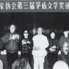 Литературная премия Мао Дуня 1991 года